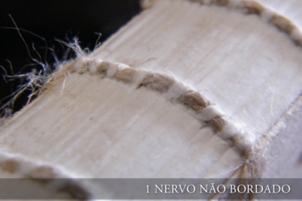 1-nervo6DBFF739-0DC4-8329-90EB-08CCE9A133F4.jpg